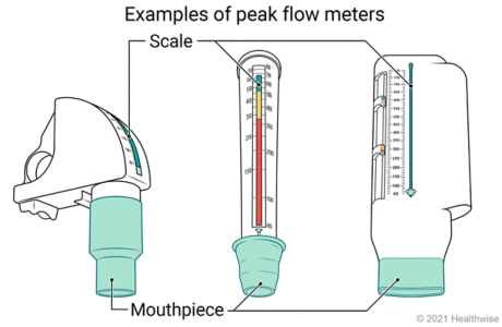Three types of peak flow meters, showing mouthpiece and numbered scale on each.