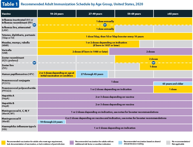 Recommended adult immunization schedule - U.S. (page 1)