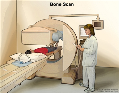 Bone scan; drawing shows patient lying on a table that slides under the scanner, a technician operating the scanner, and a monitor that will show images made during the scan.