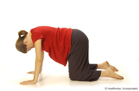 Picture of a woman kneeling on all fours (on her hands and knees)